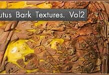 High-Quality Arbutus Bark Textures Vol2