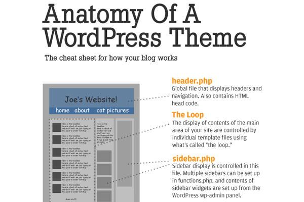 Useful WordPress Infographics and Detailed Cheat Sheets. How WordPress Themes Works ( Infographic )