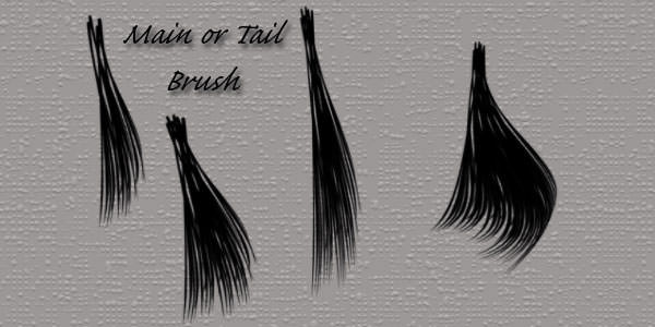 Fur and Hair Photoshop Brushes. Horse Mane and Tail Brushes